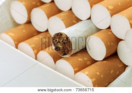Cigarette With Brown Filter In Pack