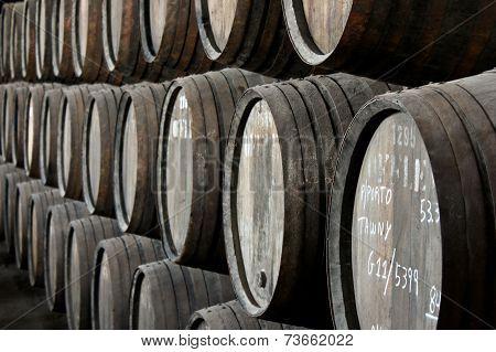 Rows Of Porto Wine Barrels