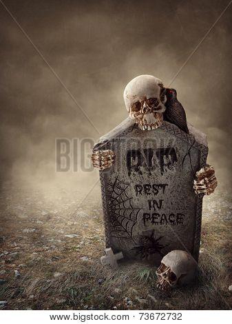 Crow sitting on a gravestone at night