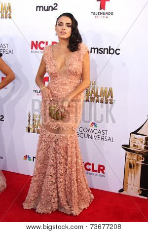 LOS ANGELES - OCT 10:  Vanessa Vasquez at the ALMA Awards Arrivals 2014 at Civic Auditorium on October 10, 2014 in Pasadena, CA