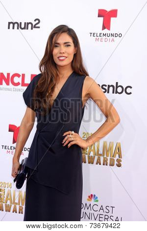 LOS ANGELES - OCT 10:  Daniella Alonso at the 2014 NCLR ALMA Awards at Civic Auditorium on October 10, 2014 in Pasadena, CA