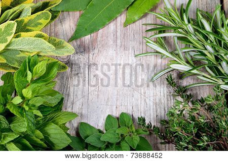 Fresh Herbs Frame Wooden Background.