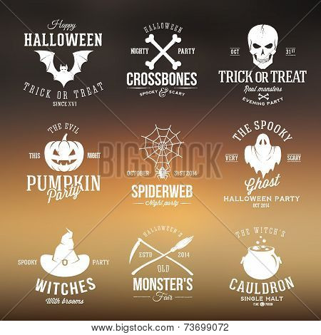 Vintage Typography Halloween Vector Badges or Logos Pumpkin Ghost Scull Bones Bat Spider Web and Wit