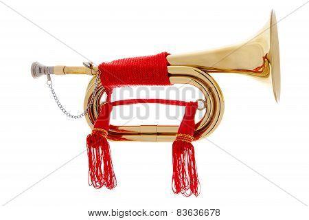 Golden Horn Over White Background