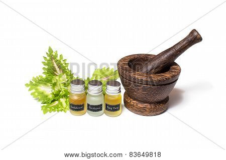 Wooden pounder with bottles of organic oils  isolated