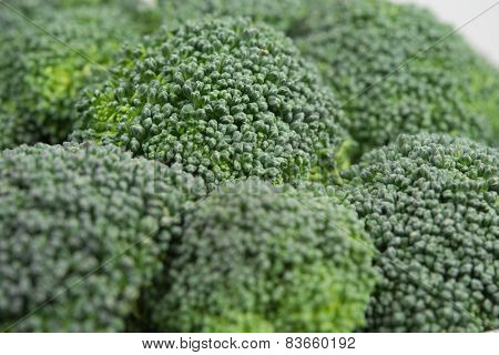 Green broccoli macro texture, real close up poster