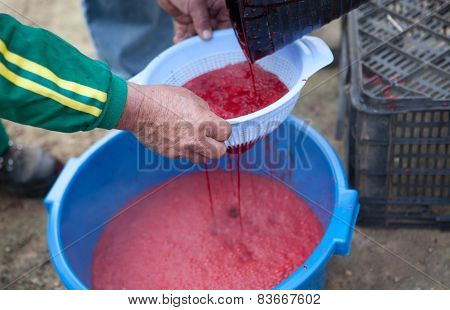 Traditional home slaughtering in a rural area. Farmer gather the blood and stiring it avoiding the coagulation poster