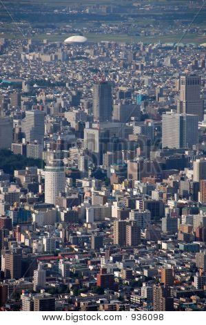 The Big City Life
