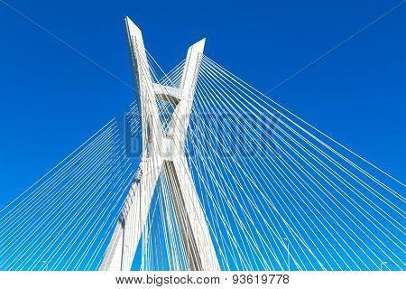 Estaiada Bridge in Sao Paulo, Brazil