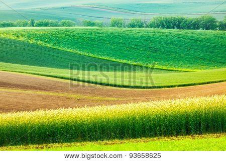 European rural wallpaper - Moravian rolling landscape, Moravia, Czech Republic