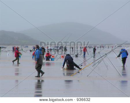 Sea Shore Fishing