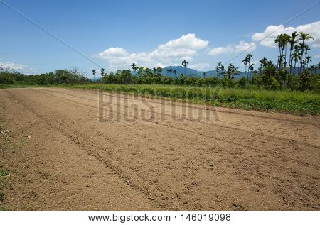 empty farm with yellow land in the countryside