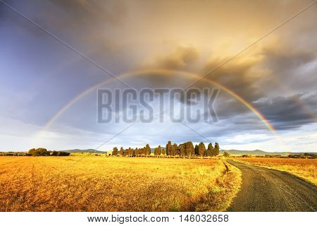 Rainbow in Tuscany cypress trees and rural road. Maremma Italy Europe