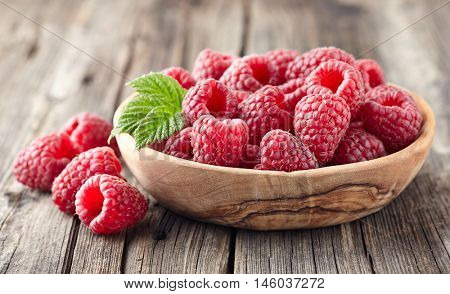 Raspberries in a plate of olive tree