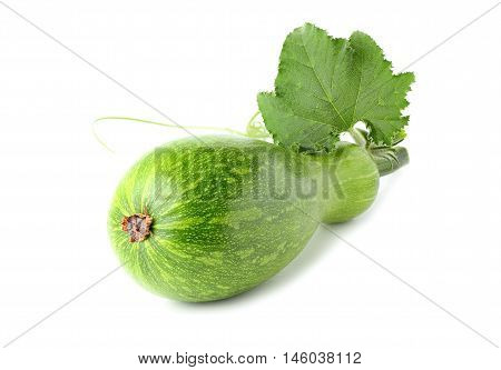 Vegetable marrow isolated on a white background.