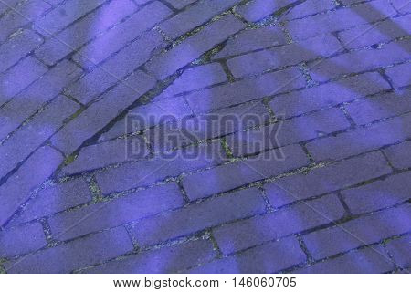 Brick pavement with blue light reflecting through adjacent glass structure.