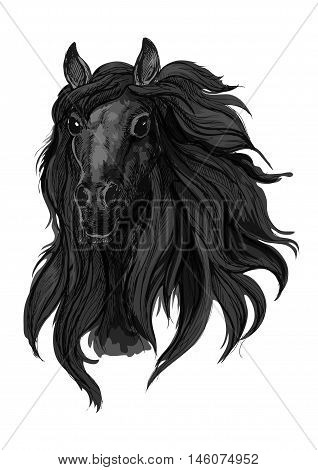 Black arabian racehorse sketch of horse head with dark thick and wavy mane. Equestrian sport, riding club or horse racing design