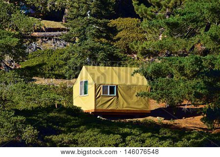 Modern style tent cabin placed in a Pine Forest taken in Mt Baldy, CA