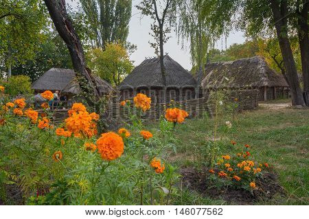 Old houses of peasants and flowers in the foreground in museum of Pirogovo . Ukraine