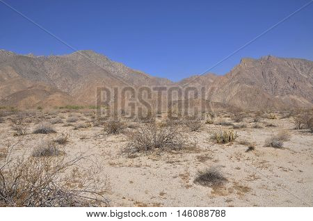 Anza Borrego Desert, United States of America