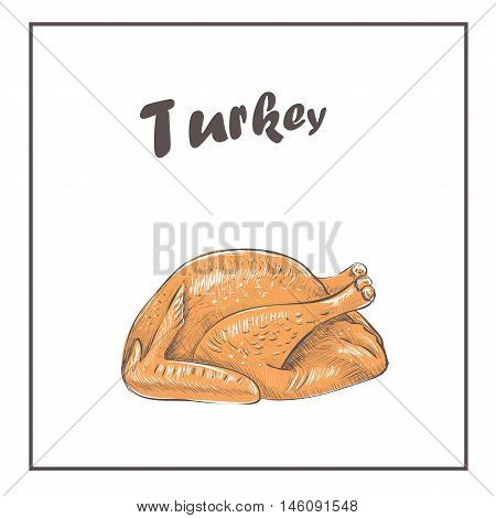 Fried Turkey roast cooked . Vector Illustration of a Happy Thanksgiving Celebration Design with Cartoon Turkey