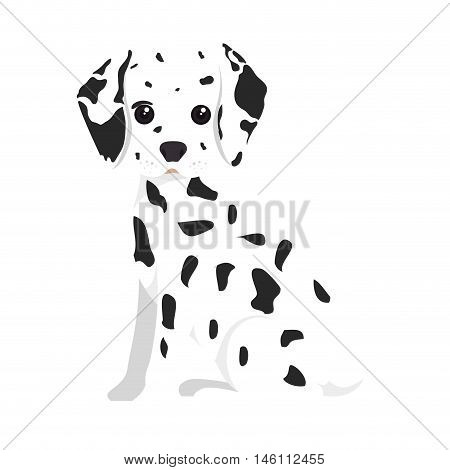 dalmatian breed dog canine pet animal. puppy cartoon. vector illustration poster