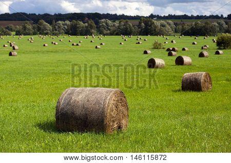 Closeup On A Haystack
