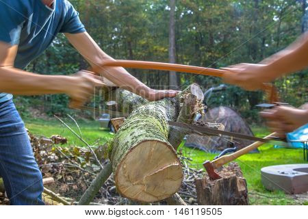 Firewood Sawing