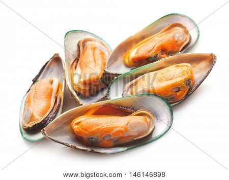 Green mussels on white background