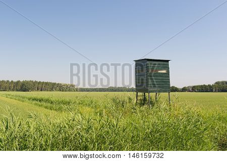Landscape with observation hut for wild in grass