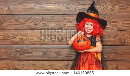 funny child girl in witch costume for Halloween with pumpkin Jack on a dark wooden background