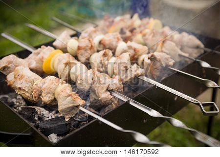 Outdoor BBQ Grill. Barbecue grill flame. Shashlik on skewers closeup raw and cooked. Juicy slices of meat prepare on fire.