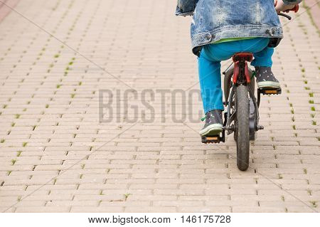 Back view on a kid boy riding on a small bicycle in the park. Child on the bike on asphalt road. Children activities outdoors.