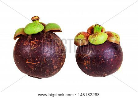 Mangosteens Queen of fruits ripe mangosteen fruit isolated on white background. objects with clipping paths.