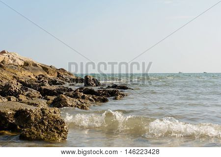 Naturist beach on the Adriatic Sea in Italy