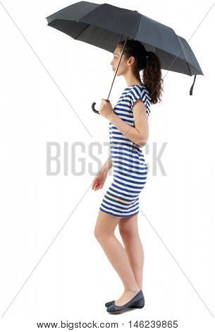 young woman in dress walking under an umbrella. Swarthy girl in a checkered dress walks under a black umbrella.
