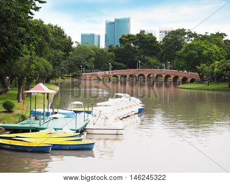 Fiberglass Rowing Boats and Pedal Boats On Water at Jatujak(Chatuchak) public park in Bangkok Thailand