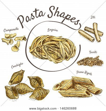 Pasta illustration set. Vector illustration of pasta.