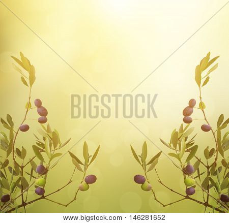 Floral natural sunny organic food background with olive tree branches, green leaves anf fruits, can be used for cards, posters and web