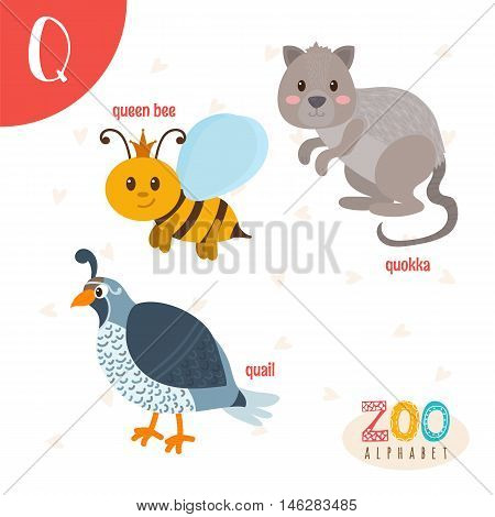 Letter Q. Cute Animals. Funny Cartoon Animals In Vector. Abc Book