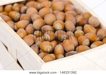 Common hazelnuts in a wicker basket on white background. Ripe seeds of Corylus avellana, native in Europe. Edible raw nuts with shells. Isolated macro food photo close up from above.