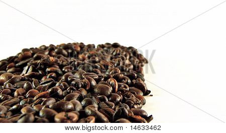 Coffee Grains Frame
