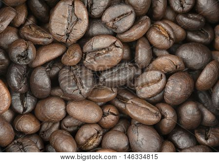 Closeup Coffee Beans Texture