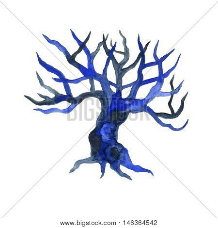 Watercolor dry bare tree branch bough no leaves closeup isolated on white background. Hand painting on paper
