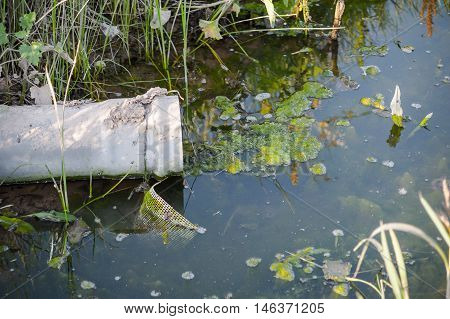 water contaminated by the discharge of pollutants