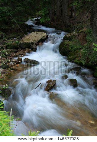 beautiful fast stream winds in the woods