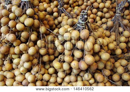 Bunches of Asian longan fruit tied at stem for market