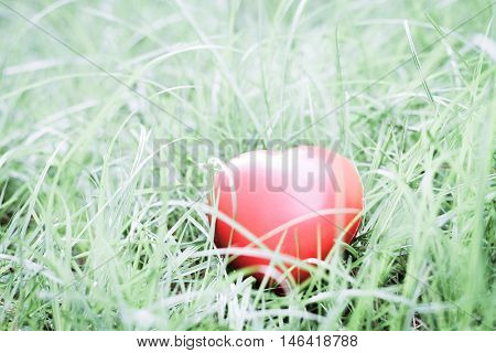 Red heart shape on grass abstract background metaphor to lonely love or neglect the act of being uncared for. for Valentine's day season concept.