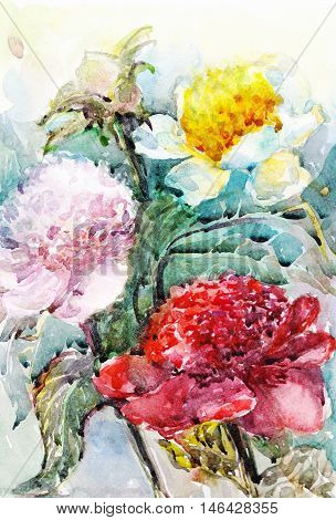 flower watercolor bouquet peony painting oil isolated decoration floral graphic watercolour leaf bloom flowers pink design nature invitation painted art summer natural paper spring brush beautiful peonies blooming blossom artistic flora garden plant