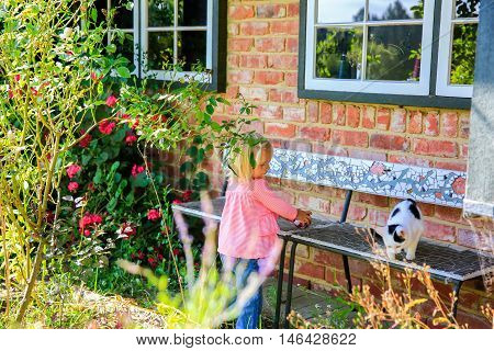 DUNEDIN NEW ZEALAND - FEBR 10 2015: attractive little girl with a ball in her hands looking at the cat. Brick house exterior with custom made bench.